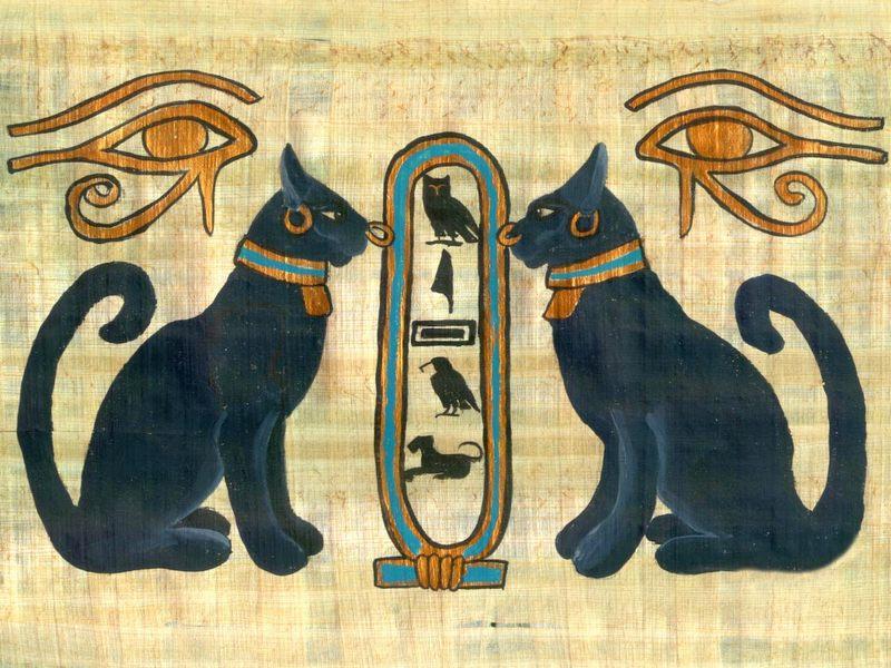 Кот на древнеегипетском